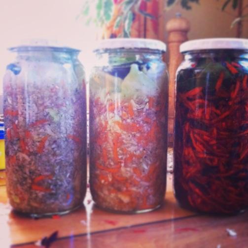 Verduras fermentadas. Paleo, primal, probióticos.