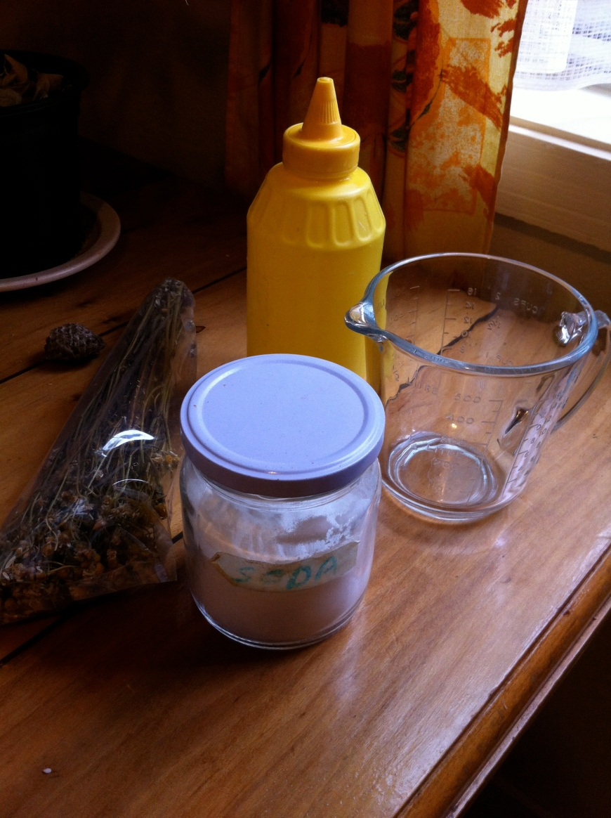 método sin champú. no poo method