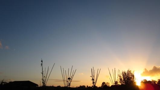 Cómo no agradecer por esta puesta de sol y como las pirámides de bambú se ven hermosamente negras a contraluz