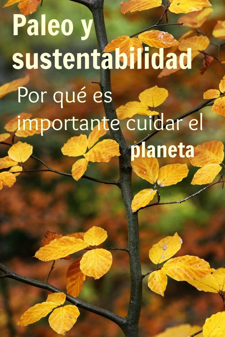 Parte importante de sanar nuestros cuerpos es asegurarnos de que el planeta esté lo suficientemente sano para poder ayudarnos en ello.