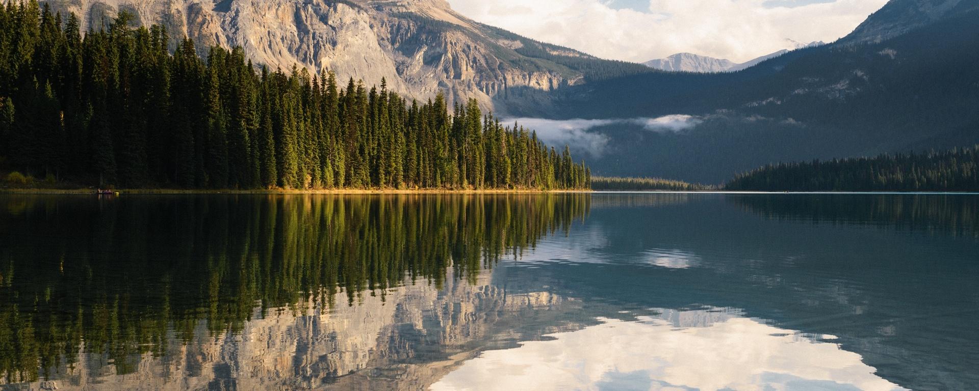 Siete cambios SENCILLOS que puedes hacer esta semana para ahorrar dinero y reducir tu impacto ambiental