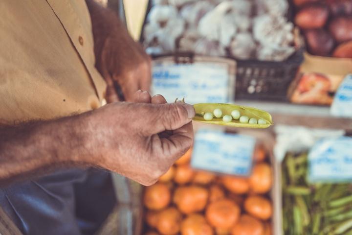 Paleo y sustentabilidad: Elegir tus frutas y verduras es cuidar el planeta